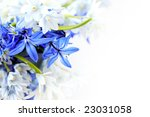 Floral Background Of First...