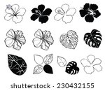 black and white flowers of...
