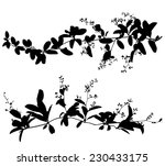 set black silhouettes of leaf... | Shutterstock .eps vector #230433175