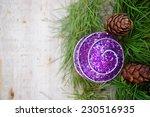 christmas decoration.    Shutterstock . vector #230516935