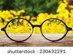 Vision Concept. Eye Glasses On...