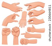 set of several hands. cartoon... | Shutterstock .eps vector #230664811