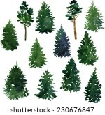 set of conifer trees drawing by ... | Shutterstock .eps vector #230676847