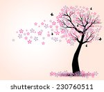 The Silhouette Of Cherry Trees...