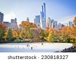 ice skaters having fun in new... | Shutterstock . vector #230818327