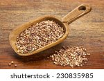roasted buckwheat kasha on a... | Shutterstock . vector #230835985