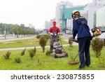 City Landscapers Gardeners...