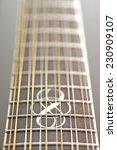 Twelve String Guitar Fretboard