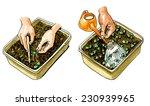 planting seedlings plants....   Shutterstock . vector #230939965