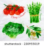 vegetables set drawn watercolor ... | Shutterstock .eps vector #230955019