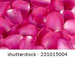 Background Of Rose Petals...