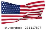 american flag in the picture... | Shutterstock . vector #231117877