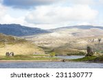 Ruins Of Ardvreck Castle And...