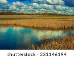 Lake In A Steppe