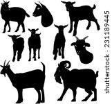 goats silhouette | Shutterstock .eps vector #231189445