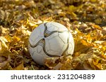 Kids Soccer Ball In Autumn...