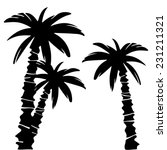 coconut palm trees set black... | Shutterstock . vector #231211321