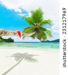 red santa hat on palm tree at... | Shutterstock . vector #231217969
