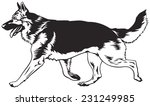 running dog  german shepherd...