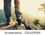 woman hiker stand on mountain... | Shutterstock . vector #231329359