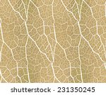 Seamless Pattern. Nature Theme.