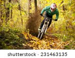 mountainbiker rides in autumn... | Shutterstock . vector #231463135