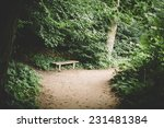 lonely wooden bench in the... | Shutterstock . vector #231481384