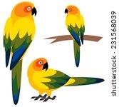 parrot | Shutterstock .eps vector #231568039