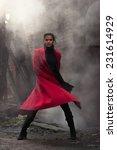 woman in red coat | Shutterstock . vector #231614929