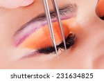 woman eye with long eyelashes.... | Shutterstock . vector #231634825