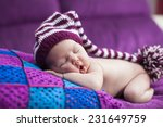 newborn baby girl in a knitted... | Shutterstock . vector #231649759