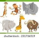 cartoon illustration of funny... | Shutterstock . vector #231736519