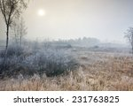 Morning Mist In Snow Field