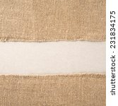 texture of the old burlap and...   Shutterstock . vector #231834175