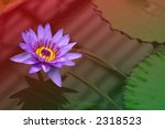 Single Waterlily In Pond...