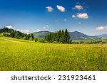 slope of mountain range with coniferous forest and village - stock photo