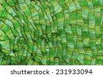 background   texture of... | Shutterstock . vector #231933094