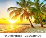 beautiful sunset over the sea... | Shutterstock . vector #232038409