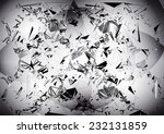 abstract black and white... | Shutterstock .eps vector #232131859