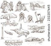 travel series  polar regions ... | Shutterstock . vector #232207645