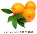 Sweet Orange Fruit With Leaf On ...