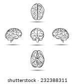 brains from different sides... | Shutterstock . vector #232388311