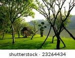 Small photo of Xishuangbanna Dai Wang's oldest Imperial Garden