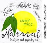 vector illustration of lemon in ... | Shutterstock .eps vector #232692859