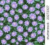 seamless composable pattern... | Shutterstock . vector #23272327