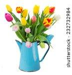 Bouquet Of Multicolored  Tulip...