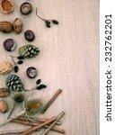 nuts | Shutterstock . vector #232762201