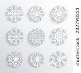 Vector 3d snowflakes set