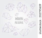 modern abstract polygonal... | Shutterstock .eps vector #232795639
