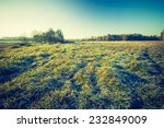 vintage photo of green field... | Shutterstock . vector #232849009